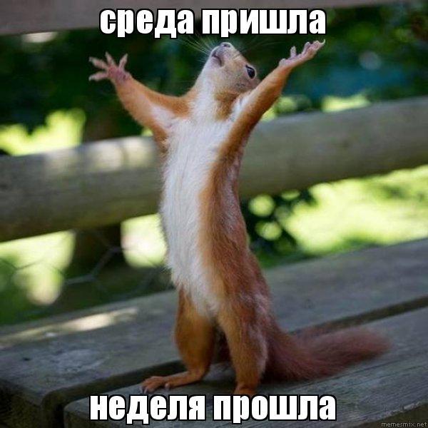 http://memesmix.net/media/created/37bd66.jpg