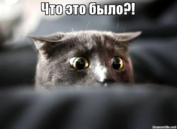 http://memesmix.net/media/created/b7qfic.jpg