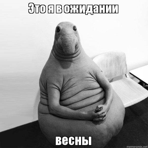 В Ожидании Весны Фильм 2012