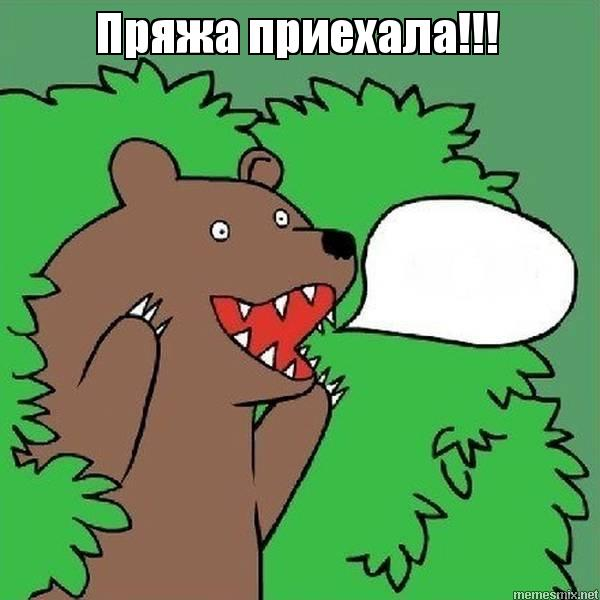 Кричит шлюха медведь гифки