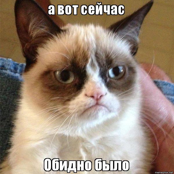 а вот сейчас Обидно было, Мем Угрюмый кот