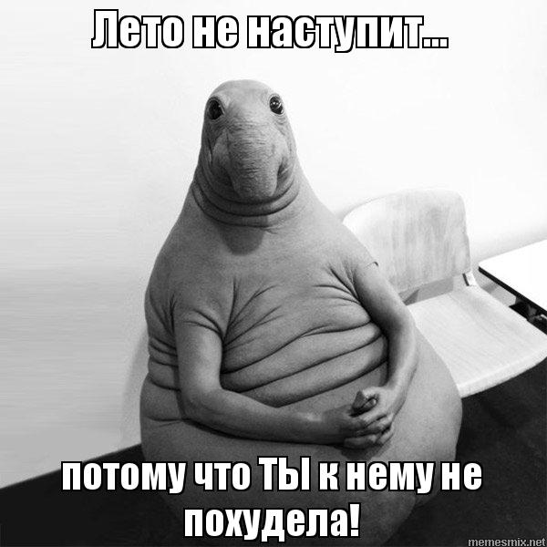 http://memesmix.net/media/created/eqxi8u.jpg