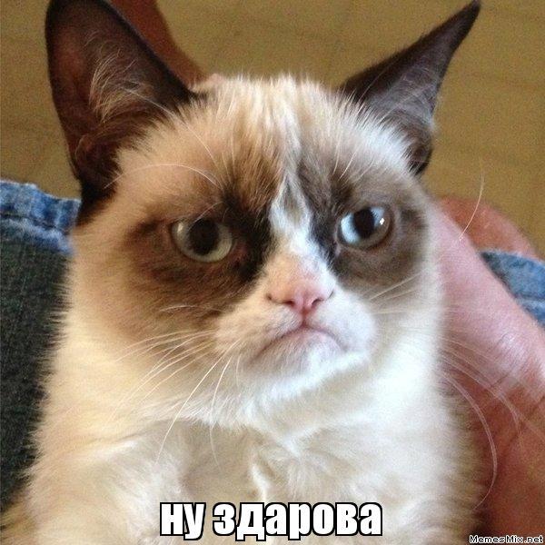 http://memesmix.net/media/created/f6j876.jpg
