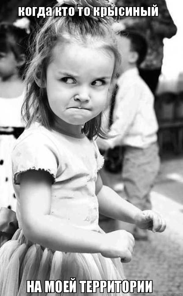 когда кто то крысиный НА МОЕЙ ТЕРРИТОРИИ , Мем Сердитый малыш  Сердитый Ребенок