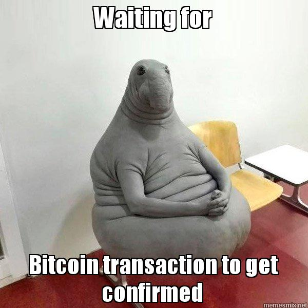 Waiting for Bitcoin transaction to get confirmed