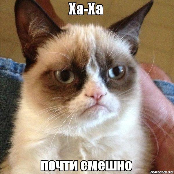 Ха-Ха почти смешно, Мем Угрюмый кот