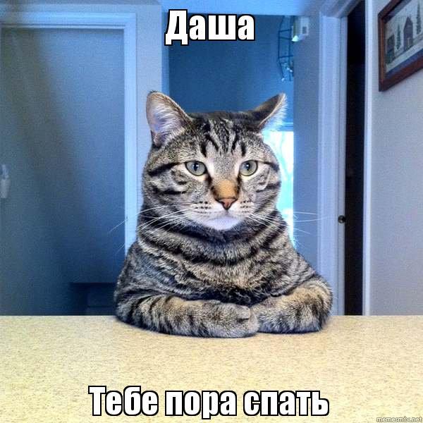 Кот спит мем