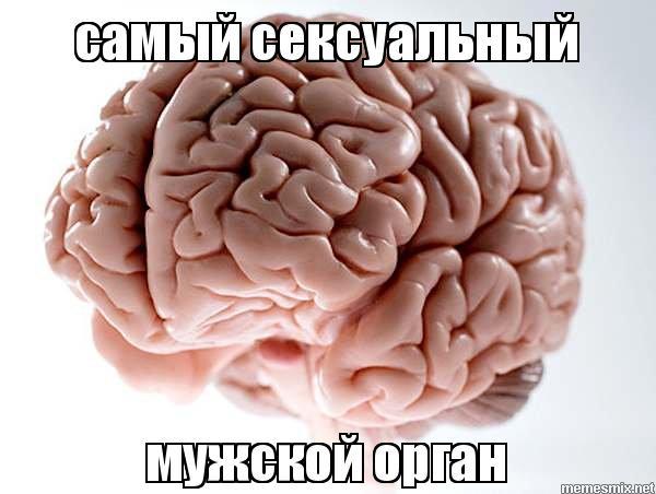 Самая сексуальная мужчины мозг