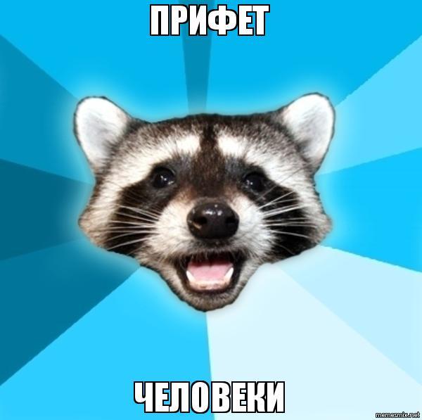 Шутящий кот мем