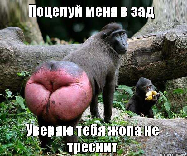 u-menya-v-zhope-foto-glubokie-glotki-mineti