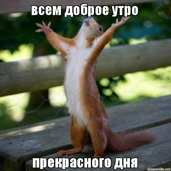 http://memesmix.net/media/created/stfw3z.jpg