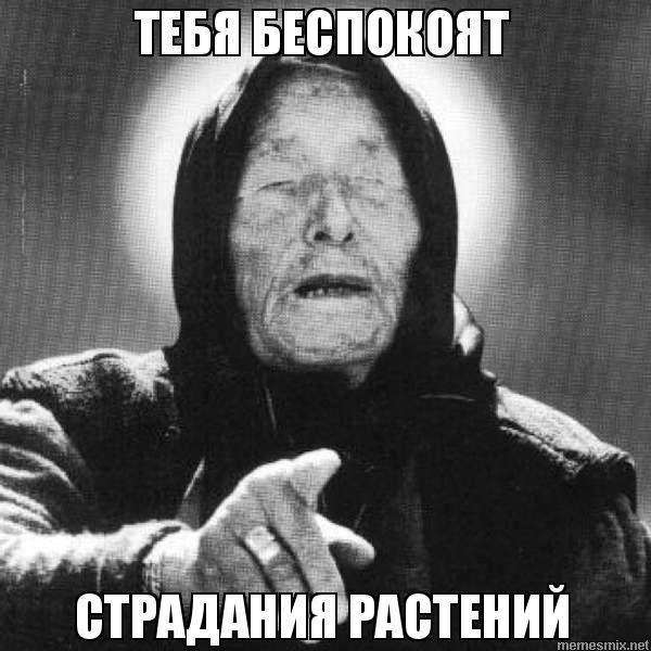 http://memesmix.net/media/created/teav5m.jpg