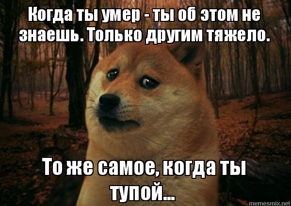 http://memesmix.net/media/created/tpogmf.jpg