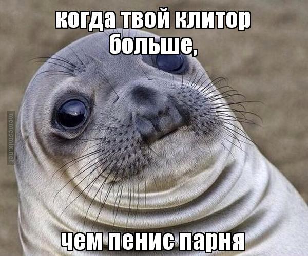 Пенис тюленя