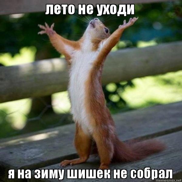 http://memesmix.net/media/created/wygkdv.jpg
