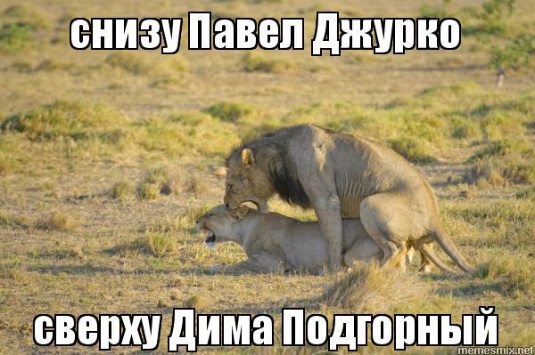 pokazhite-kak-snoshayutsya