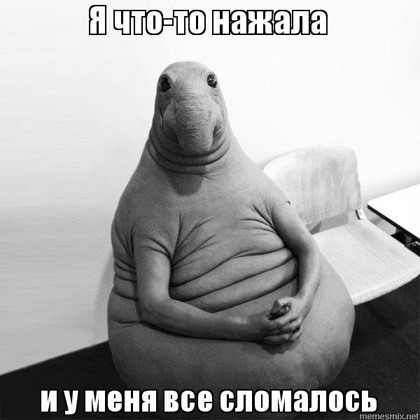 http://memesmix.net/media/created/xvp8nl.jpg