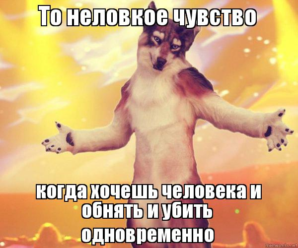 erotika-devushka-za-rulem