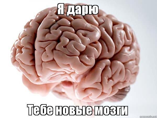 скачать мозги через торрент - фото 8