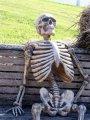 Скелет ждет