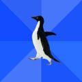 Пингвин социофоб