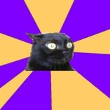 мем Беспокойство кошки