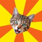 мем Плохой совет кота
