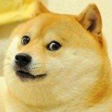 мем Doge
