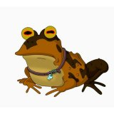 мем Гипно жаба