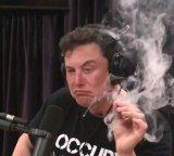 мем Илон Маск курит траву