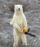 мем Медведь с бензопилой