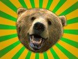 мем Нелепый медведь