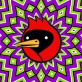 мем Омская птица