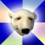 мем Похмельный белый медведь