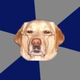 мем Расистская собака