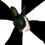 мем Ролевой кролик