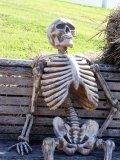 мем Скелет ждет