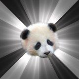 мем Сожалеющая панда