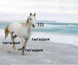 мем Тыгыдык