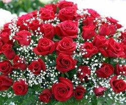 8 Марта открытка красные розы