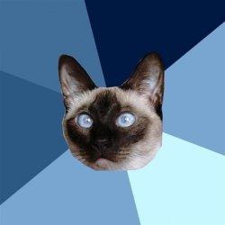 Хронические болезни кошек и котов