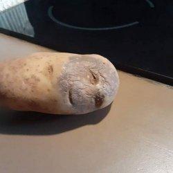 Картошка с человеческим лицом