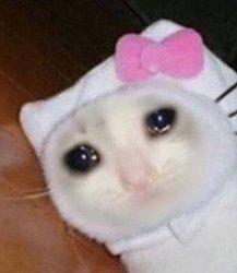 Кот плачет от боли