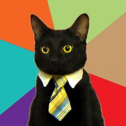 Кот предприниматель