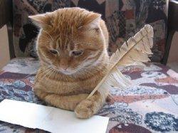 Кот стихи