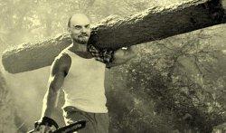 Ленин и бревно