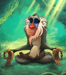 Мудрый йога