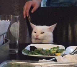 С котом за столом