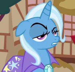 Серьезная пони