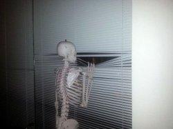 Скелет ждет у окна
